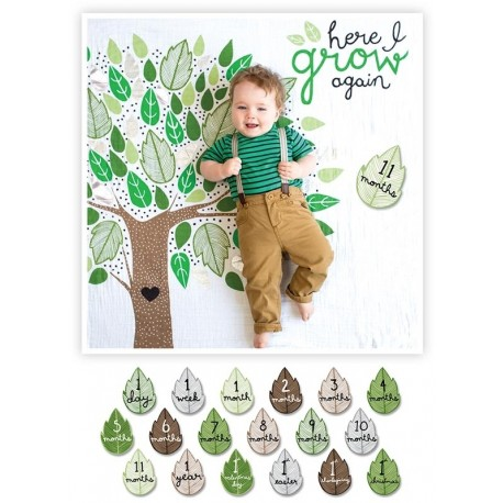 Swaddle-Blanket & Karten Set - Here I Grow Again